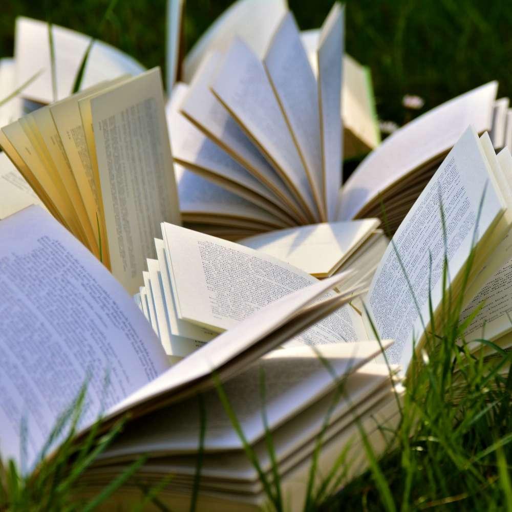 Kirjoja nurmikolla