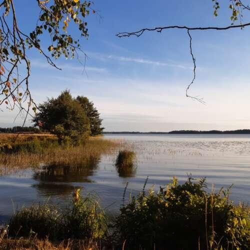 Köyliönjärvimaisema